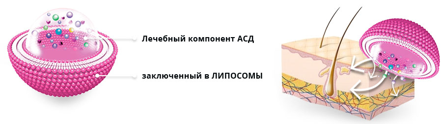 Обзор косметики «Айсида»